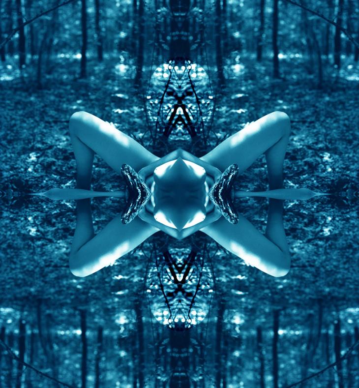 insecte--c-2-copie-bleu-site